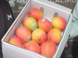 MangoPost