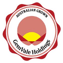 Gemvale Holdings