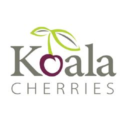 Koala Cherries